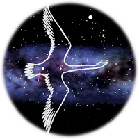 CYGNUS 2011 : 3rd  Workshop on directional detection of Dark Matter